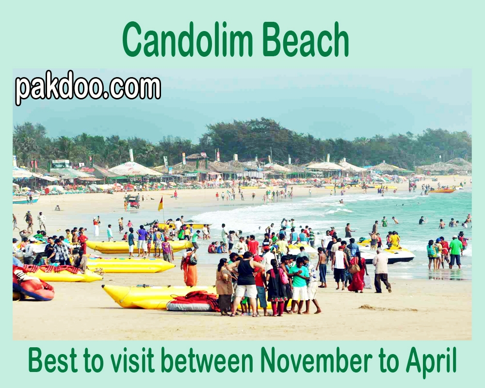 candolim beach is always crowdy between November to April. it is located in goa