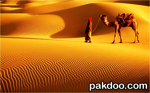 jaisalmer is situated in rajasthan and it is a wonderful place for tourist.