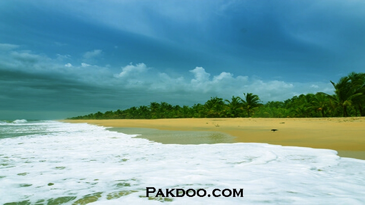 Visit Kerala - Vist Marari Beach Best places to visit in Kerala